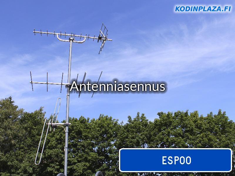 pakkalan antennihuolto