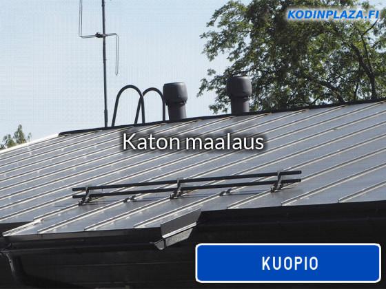 Katon maalaus Kuopio