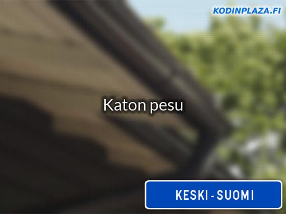 Katon pesu Keski-Suomi