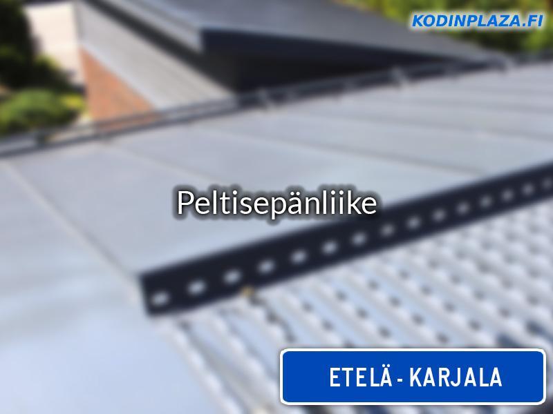 Peltisepänliike Etelä-Karjala