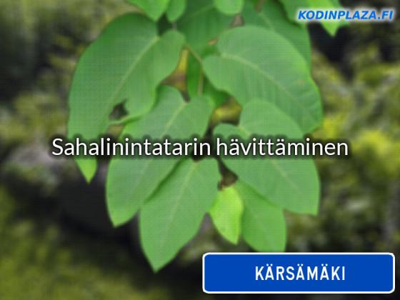 Hannun Puukanto